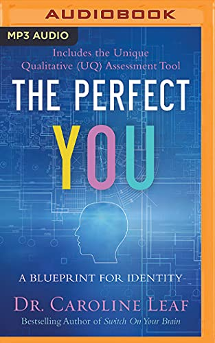 the-perfect-you-a-blueprint-for-identity