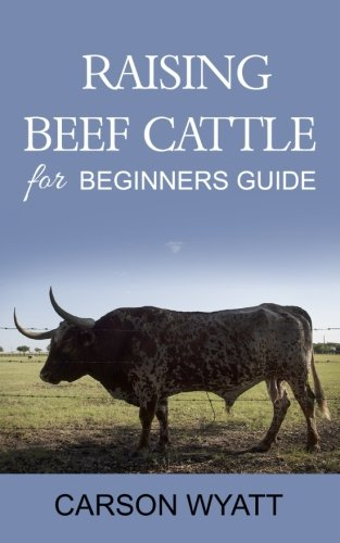 raising-beef-cattle-for-beginners-guide
