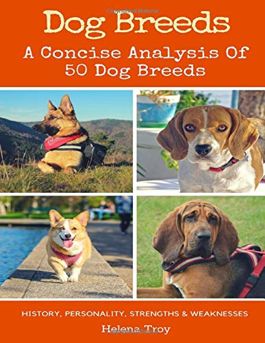 dog-breeds-a-concise-analysis-of-50-dog-breeds