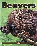 Hodge, Deborah: Beavers (Kids Can Press Wildlife Series)