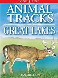 Sheldon, Ian: Animal Tracks of the Great Lakes