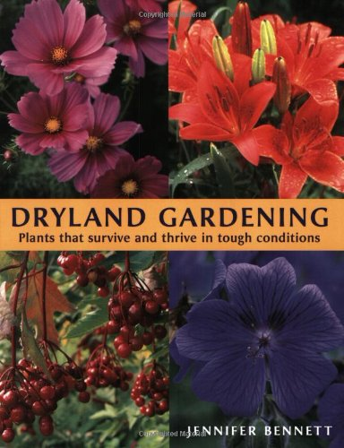 dryland-gardening-plants-that-survive-and-thrive-in-tough-conditions