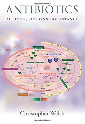 antibiotics-actions-origins-resistance