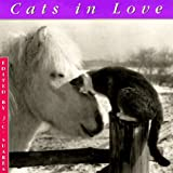 Suares, J.C.: Cats in Love