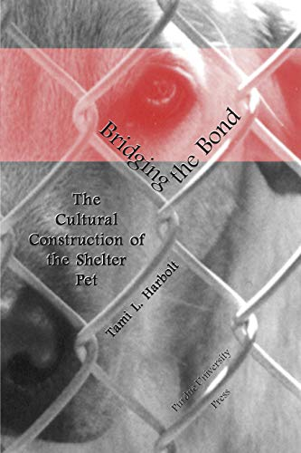bridging-the-bond-the-cultural-construction-of-the-shelter-pet