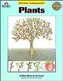Moore, Jo Ellen: Plants (Science mini packs)