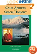 Calm Abiding And Special Insight: Achieving Spiritual Transformation Through Meditation (Textual Studies and Translations in Indo-Tibetan Buddhism)