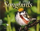 Karlson, Kevin: Songbirds 2003 Calendar