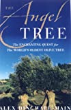 Dingwall-Main, Alex: The Angel Tree: The Enchanting Quest for the World's Oldest Olive Tree