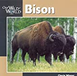 Winner, Cherie: Bison (Our Wild World)