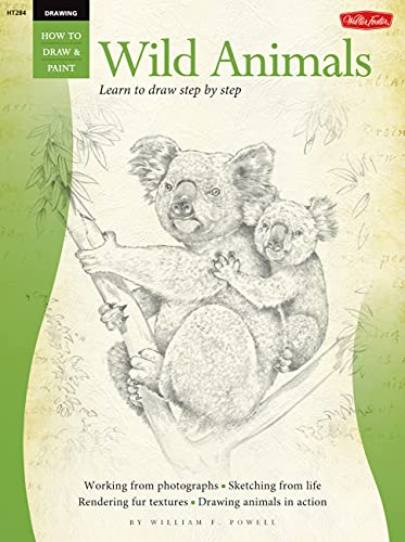 drawing-wild-animals-learn-to-draw-step-by-step-how-to-draw-paint