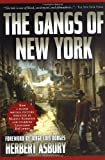 Asbury, Herbert: The Gangs of New York : An Informal History of the Underworld