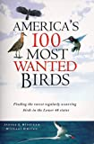 Mlodinow, Steven G.: America's 100 Most Wanted Birds: Finding the Rarest Regularly Occuring Birds in the Lower 48 States