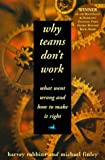 Robbins, Harvey: Why Teams Don't Work: What Went Wrong and How to Make It Right