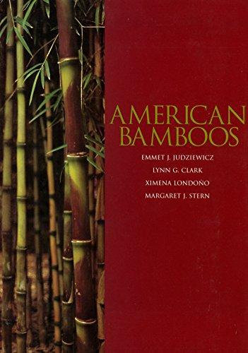 american-bamboos