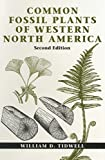 Tidwell, William D.: Common Fossil Plants of Western North America