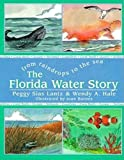 Lantz, Peggy S.: The Florida Water Story: From Raindrops to the Sea