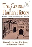Goudsblom, Johan: The Course of Human History: Economic Growth, Social Process, and Civilization (Sources and Studies in World History)