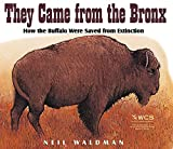 Waldman, Neil: They Came from the Bronx: How the Buffalo Were Saved from Extinction