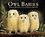 Waddell, Martin: Owl Babies