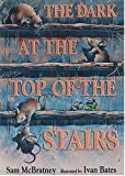 McBratney, Sam: Dark at the Top of the Stairs