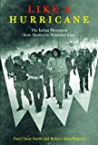 Warrior, Robert Allen: Like a Hurricane: The Indian Movement from Alcatraz to Wounded Knee