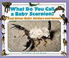 What Do You Call a Baby - Scorpion? And…