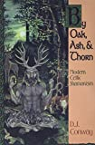 D.J. Conway: By Oak, Ash, & Thorn: Modern Celtic Shamanism (Llewellyn's Celtic Wisdom)