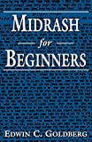 Goldberg, Edwin C.: Midrash for Beginners