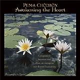 Pema Chodron: Pema Chodron: Awakening the Heart