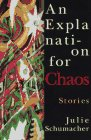 Schumacher, Julie: An Explanation for Chaos