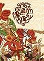 Acheter Storm Fairy volume 1 sur Amazon