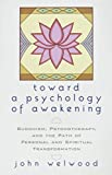 Welwood, John: Toward a Psychology of Awakening: Buddhism, Psychotherapy, and the Path of Personal and Spiritual Transformation