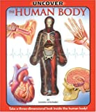 Luann Colombo: Uncover the Human Body: An Uncover It Book