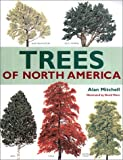 Mitchell, Alan: Trees of North America