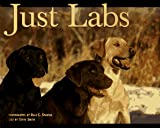 Smith, Steve: Just Labs
