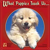 Dromgoole, Glenn: What Puppies Teach Us: Life&#39;s Lessons Learned from Our Little Friends