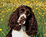 Just English Springer Spaniels 2005 Calendar