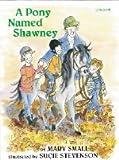 Small, Mary: A Pony Named Shawney