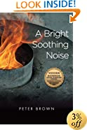 A Bright Soothing Noise (Katherine Anne Porter Prize in Short Fiction)