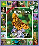 Kaufman, Kenn: Audubon 365 Butterflies Calendar 2011 (Picture-A-Day Wall Calendars)