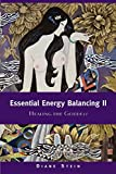 Stein, Diane: Essential Energy Balancing II: Healing the Goddess