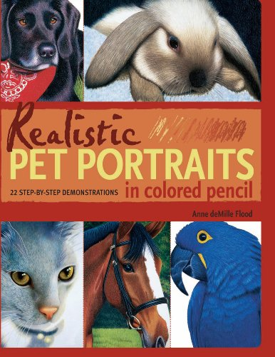 realistic-pet-portraits-in-colored-pencil