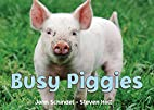 Busy Piggies (A Busy Book) by John Schindel