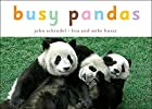 Busy Pandas (Busy Books) by John Schindel