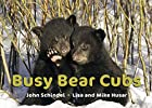 Busy Bear Cubs (A Busy Book) by John…