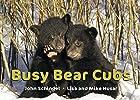 Busy Bear Cubs (A Busy Book) by John…