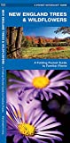 Leung: New England Trees & Wildflowers: An Introduction to Familiar Species