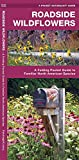 James Kavanagh: Roadside Wildflowers: An Introduction to Familiar North American Species (North American Nature Guides)