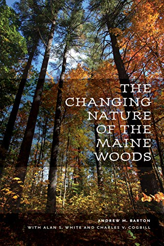 the-changing-nature-of-the-maine-woods